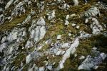iancorless.orgP1050383trofeokima