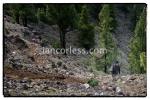 iancorless.comP1030358