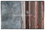 iancorless.comP1030740