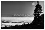 iancorless.comP1040674