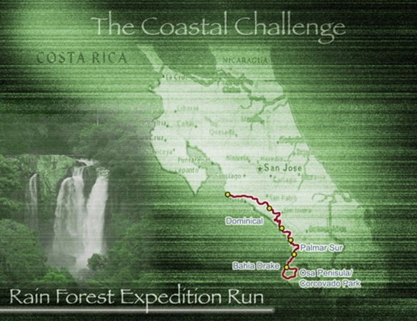 TCC RAINFOREST ROUTE V1