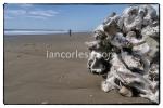iancorless.comP1050899