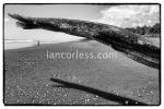 iancorless.comP1050938a