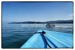 iancorless.comP1070305