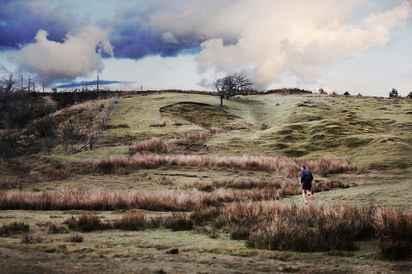 Andy Davies on the Rivington fells