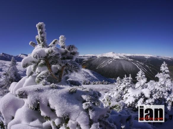 ©copyright .iancorless.com.P1190949