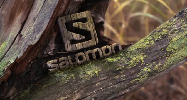 Image result for salomon running logo