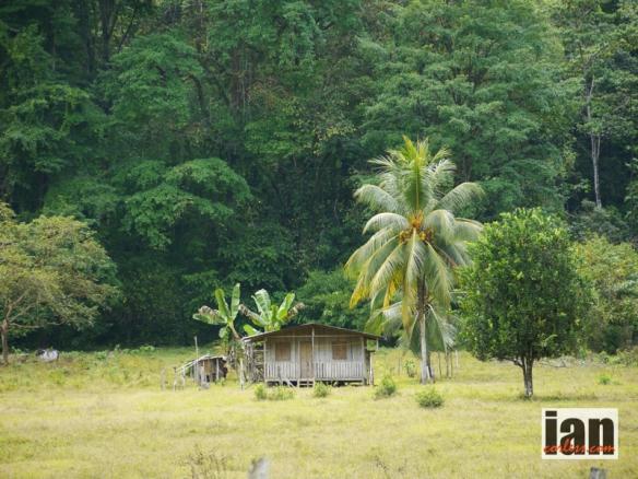 Costa Rica TCC2014 ©iancorless.com