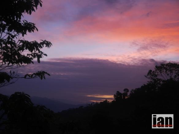 ©iancorless.com.P1120120