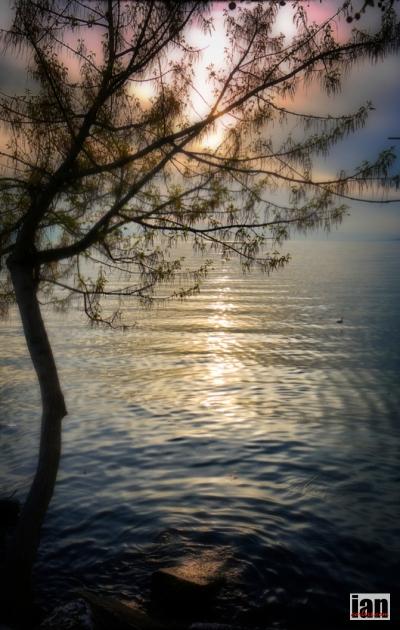 ©iancorless.comiancorless.orgP1010508