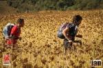 ©iancorless.com_Nepal2014-0292