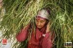 ©iancorless.com_Nepal2014-0359
