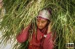 ©iancorless.com_Nepal2014-0359#ETRkathmandu