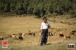©iancorless.com_Nepal2014-0370