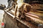 ©iancorless.com_Nepal2014-7818