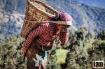 ©iancorless.com_Nepal2014-8286#ETRkathmandu