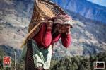 ©iancorless.com_Nepal2014-8296