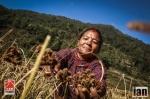 ©iancorless.com_Nepal2014-8698
