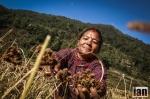 ©iancorless.com_Nepal2014-8698#ETRkathmandu