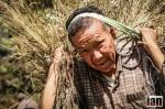 ©iancorless.com_Nepal2014-8711#ETRkathmandu