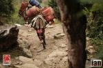 ©iancorless.com_Nepal2014_6-0400
