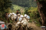 ©iancorless.com_Nepal2014_6-0405