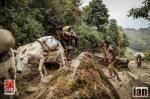 ©iancorless.com_Nepal2014_6-0443