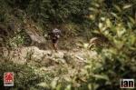 ©iancorless.com_Nepal2014_6-0587