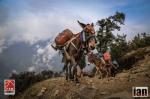 ©iancorless.com_Nepal2014_7-0983
