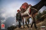 ©iancorless.com_Nepal2014_7-0986