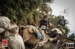 ©iancorless.com_Nepal2014_7-1532
