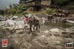 ©iancorless.com_Nepal2014_7-1539