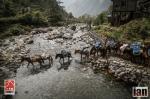 ©iancorless.com_Nepal2014_7-1548