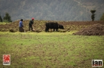 ©iancorless.com_Nepal2014_7-1652