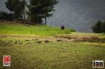 ©iancorless.com_Nepal2014_7-1654