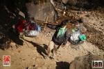 ©iancorless.com_Nepal2014_9-3527
