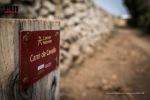 ©iancorless.com_Menorca2015-2773
