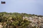 ©iancorless.com_Menorca2015-2900