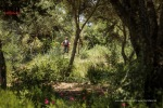©iancorless.com_Menorca2015-3736-2