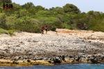 ©iancorless.com_Menorca2015-3797-2