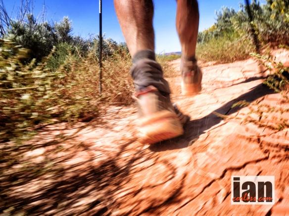 ©copyright .iancorless.com.P1020944