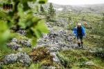 ©iancorless.com_Tromso2015-6997